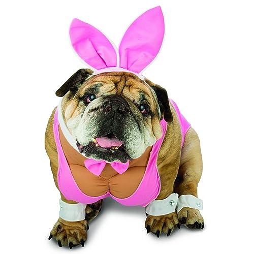 Rasta Imposta - Zelda Hunny Bunny Pet Costume