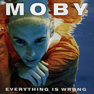 Everything Is Wrong [Explicit]