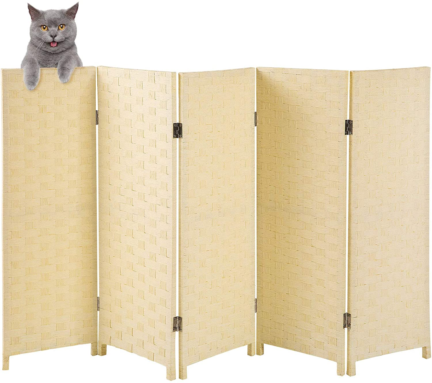 Yangbaga Cat Litter Box Privacy Screen 3.1' Denver 67% OFF of fixed price Mall 5' Foldab Wide High