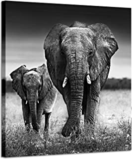 Elephant Pictures Art Wall Decor: Photographic Arts The Love of The Elephant Mama and Baby Print on Canvas in Black and White (28