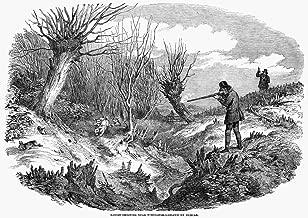 Posterazzi Poster Print Collection Rabbit Hunting N'Rabbit-Shooting Near Tunbridge.' Wood Engraving English 1850, (24 x 36), Multicolored
