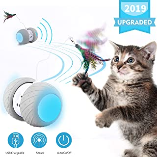 Best cat feather toys Reviews