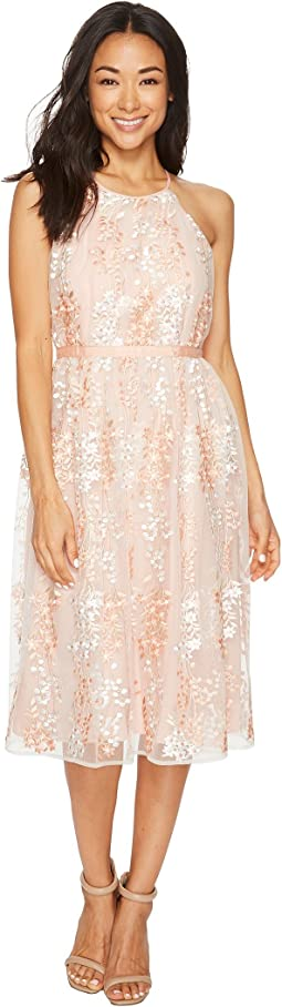 Maggy London Trailing Daisy Mesh Halter Dress