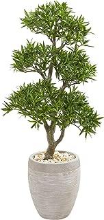 "Nearly Natural 43"" Bonsai Styled Podocarpus Artificial Sandstone Planter Silk Trees, Green"