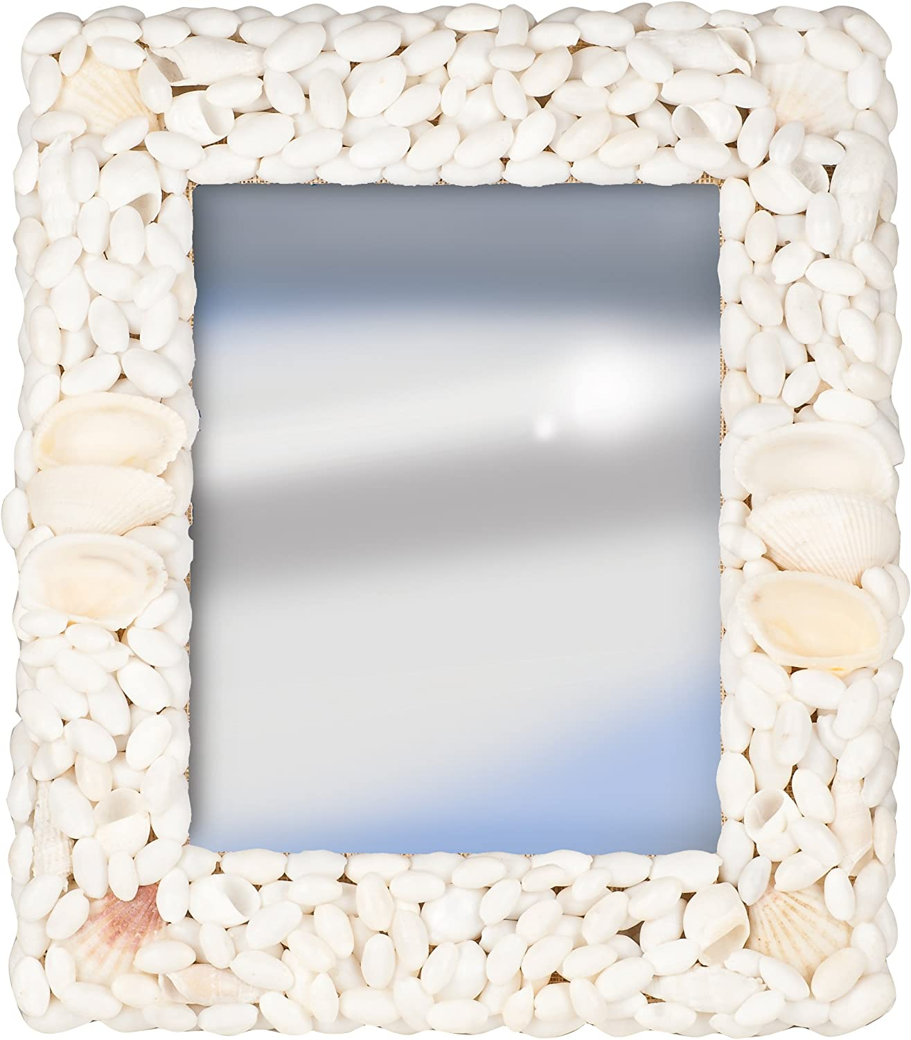 Pinnacle Terragrafics Palm Springs Wall Mounted Shell Mirror, 18 by 24-Inch, White