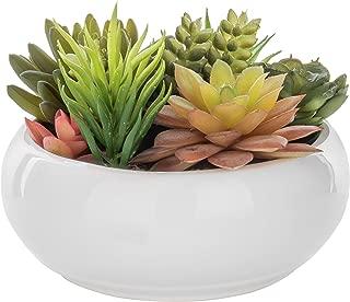 ceramic succulent bowl
