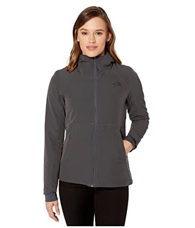 The North Face Shelbe Raschel Hoodie (Asphalt Grey) Women