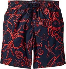 Vilebrequin Kids - Shellfish Swim Trunk (Toddler/Little Kids/Big Kids)