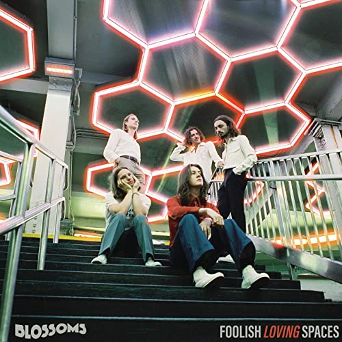 Foolish Loving Spaces [Explicit]