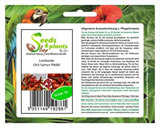 Stk - 5x Lombardo- Samen Saatgut Küche Garten Chili samen Chili mild PW60 - Seeds Plants Shop Samenbank Pfullingen Patrik Ipsa