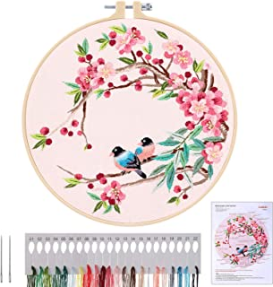 MWOOT Kit de Démarrage de Broderie, DIY Point de Croix Broderie Starter kit,Embroidery Starter Kit pour Adultes Débutant (...