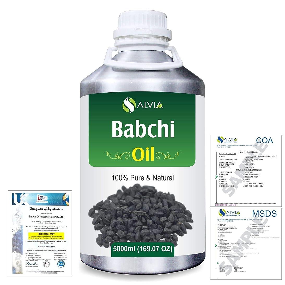マルコポーロ罰する石油Babchi (Psoralea Corylifolia) 100% Pure Natural Oil 5000ml/169 fl.oz.