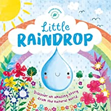 Little Raindrop (Nature Stories)
