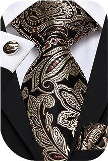 ست کراوات و مربع جیبی ابریشمی Dubulle Mens Paisley
