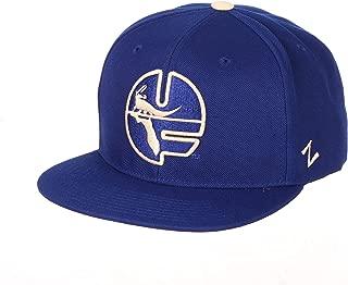 florida gator snapback hats