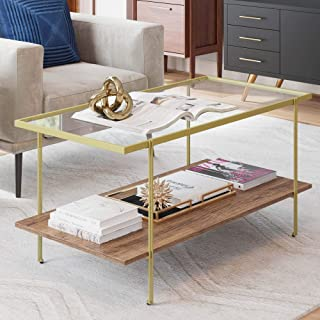 Nathan James 31201 Asher Mid-Century Rectangle Coffee Table Glass Top and Rustic Oak Storage Shelf with Sleek Brass Metal Legs, Gold