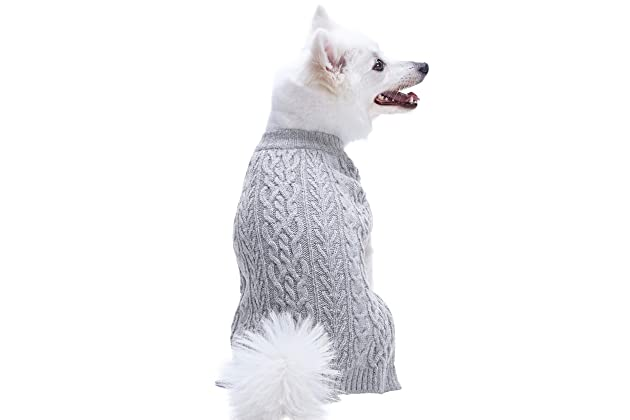 Best dog sweaters for dogs
