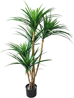 Artificial Tropical Yucana Tree with Rubber Leaves and Natural Trunk, Fake Plant for Indoor-Outdoor Home Décor-51-Inch Tall Topiary by Pure Garden