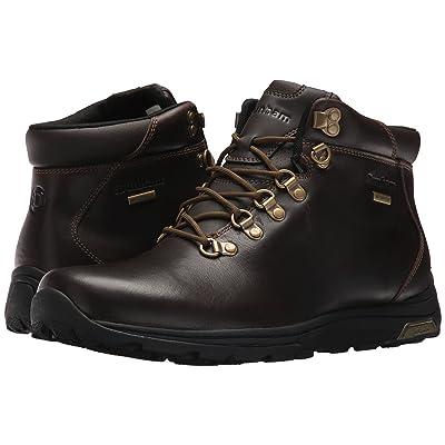Dunham Trukka Alpine Waterproof (Brown) Men