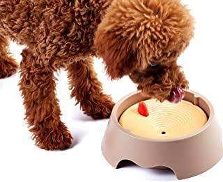 Alfie Pet - Ryan Slow-Down Pet Water Bowl (for Dogs & Cats)