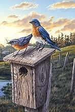 Toland Home Garden Eastern Bluebird Birdhouse 12.5 x 18 Inch Decorative Sunrise Field Bird Garden Flag