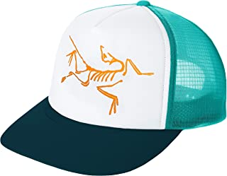 [アークテリクス] BIRD TRUCKER HAT スポーツ メンズ LEVITATE/LABYRINTH US ONE SIZE (FREE サイズ) [並行輸入品]