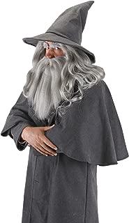 gandalf costume hat