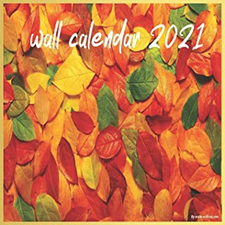 wall calendar 2021: 2021 A Year of Hope and Inspiration , A Year of Hope ,inspiration 16-month wall calendar 8.5 X 8.5 Inch