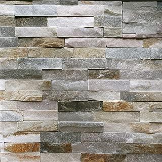 Sample Of Natural Ledgestone Wall Panel Canyon Beige
