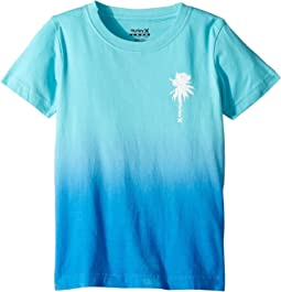 Hurley Kids Trajectory Gradient Tee (Little Kids)