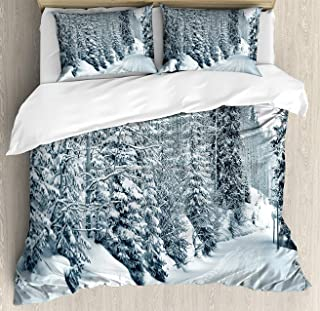 Winter Duvet Cover Set, Bed Sheets, Ski Themed Snowy Road Cold Parts of The World Footprints Colorado United States, Decorative 3 Piece Bedding Set with 2 Pillow Shams, Twin Size, Black White