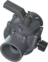 Jandy 2876 2-Port 2 to 2-1/2-Inch Positive Seal Pump Valve, Gray