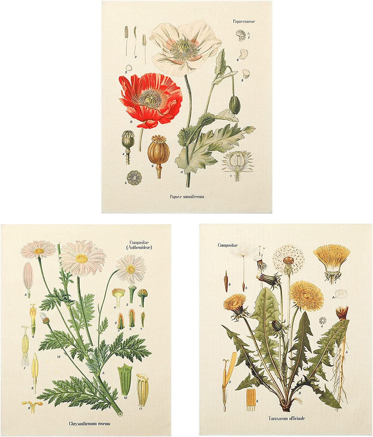 3Pcs Flower Tapestry Wall Hanging Wholesale Finally resale start Flor - Lourny Wildflower Plant