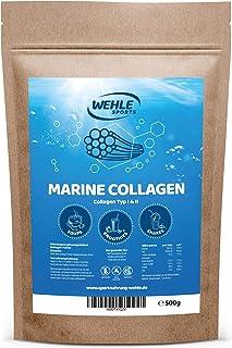 Marine Kollagen Pulver 500g – Collagen Hydrolysat Peptide Typ I und Typ II –..