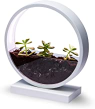Make Lemonade Indoor LED Planter with Easy-Grow Accessories Kit, Brightness Settings, Ideal for Home and Office,Succulents...