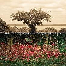 Be Still My Soul (feat. Aoife O'Donovan, Jon Irabagon, Linda Oh, Matt Mitchell & Rudy Royston)