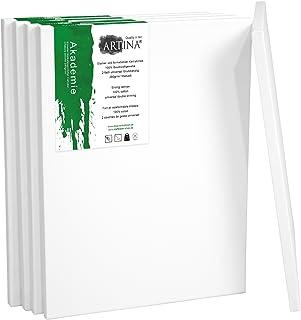 Artina Set de 5 lienzos Blancos de 100% algodón con bastidores robustos - Calidad >Akademie< - 280g/m² - 60x80 cm