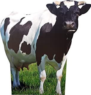 aahs!! Engraving Animal Life Size Cardboard Cutout Stand Up   Standee Picture Poster Photo Print (Cow)