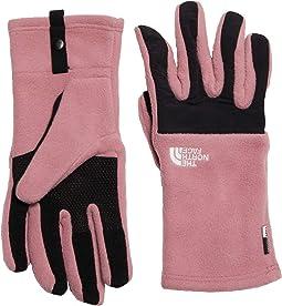 Denali Etip Gloves