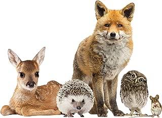LENA FIORE' INC Woodland Animals Window Decal Cling - Fox & Friends Vinyl Sticker