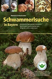 Schwammerlsuche in Bayern: Heimische Speise- und Giftpilze s