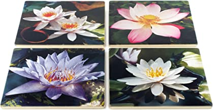 Best martha lily photography Reviews