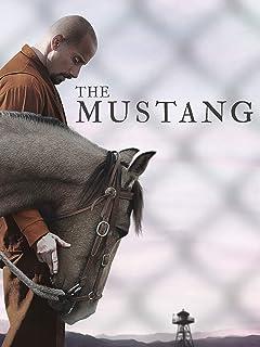 Jmj Mustang