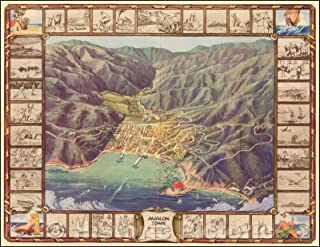 Best map of avalon catalina island Reviews