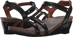 Taos Footwear - Wanderer