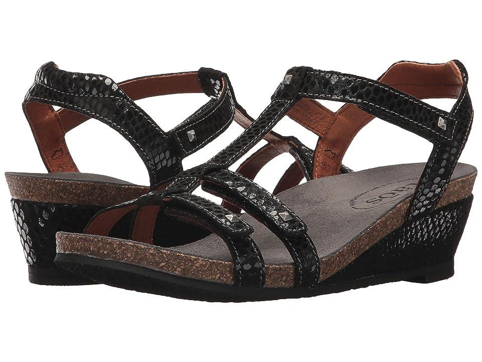 Taos Footwear Wanderer (Black Reptile Embossed) Women