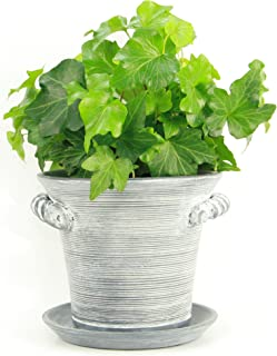 """Window Garden Rustic Charm 6"""" Planter - Fine Home Décor Ceramic Indoor Decorative Pot. for or Herbs, Flowers, Succulents. Beautifully Packaged, Great Gift for Mom, Office, Holiday."""