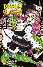 Demon slayer. Kimetsu no yaiba (Vol. 14)