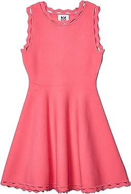 Zigzag Trim Flare Dress (Big Kids)