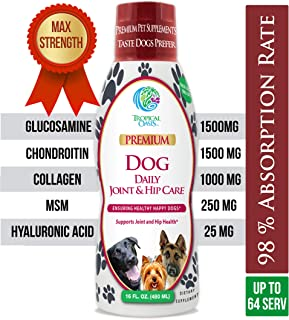 Tropical Oasis Veterinarian Developed Liquid Hip and Joint Supplement for Dogs w/Glucosamine, Chondroitin, MSM, Hyaluronic Acid and Collagen - Fast Joint Relief for Dogs - Great Taste! Up to 128 Serv